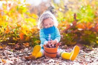 C'est l'automne et il y a encore beaucoup de jardinage à faire!