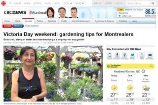 West Island Nursery on CBC!