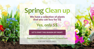 spring-clean-up-cover